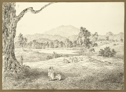 View with Parasnath in the distance on the road between Chas and Angwali (Bihar); villagers and cattle in the foreground. 8 February 1823